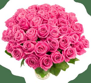 Розы картинка - с днем рождения