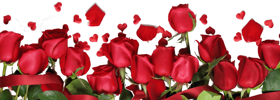 Розы пастору Наталье в день рождения 13 мая 2019, картинка