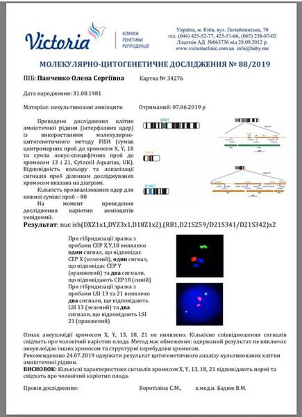 Анализ молекулярного цитогенетического обследования. миниатюра